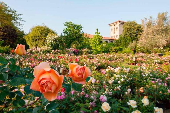 Perché visitare Giardinaria?